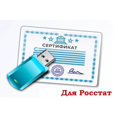 ЭЦП для РОССТАТ (Электронная Цифровая Подпись)